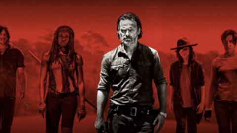 Serious On-Set Injury Halts Walking Dead Season 8 Production