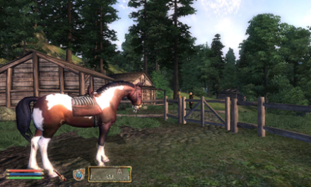"Todd Howard On Elder Scrolls Horse Armor: ""People Will Buy Anything"""